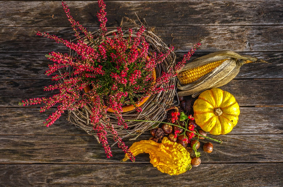 Acorns, gourds, dried corn and flowers around a pot surrounded by branches with red flowers